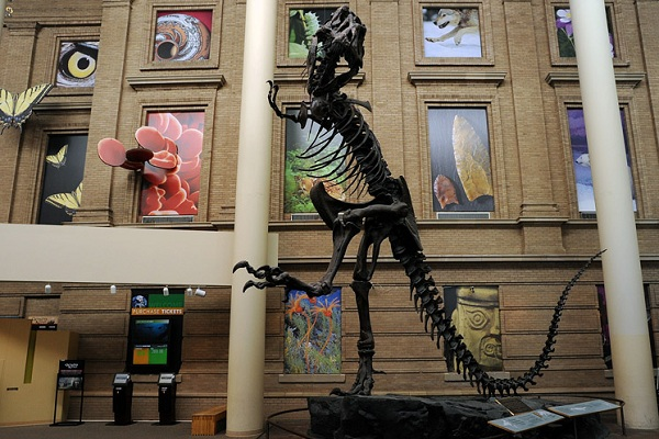 Denver Museum of Nature & Science in Denver